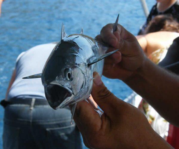 Fishing Trip from Sarigerme Dalaman