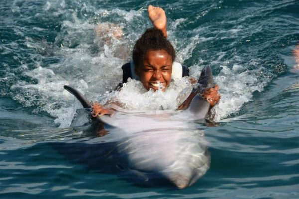 swimming with dolphins in Turkey