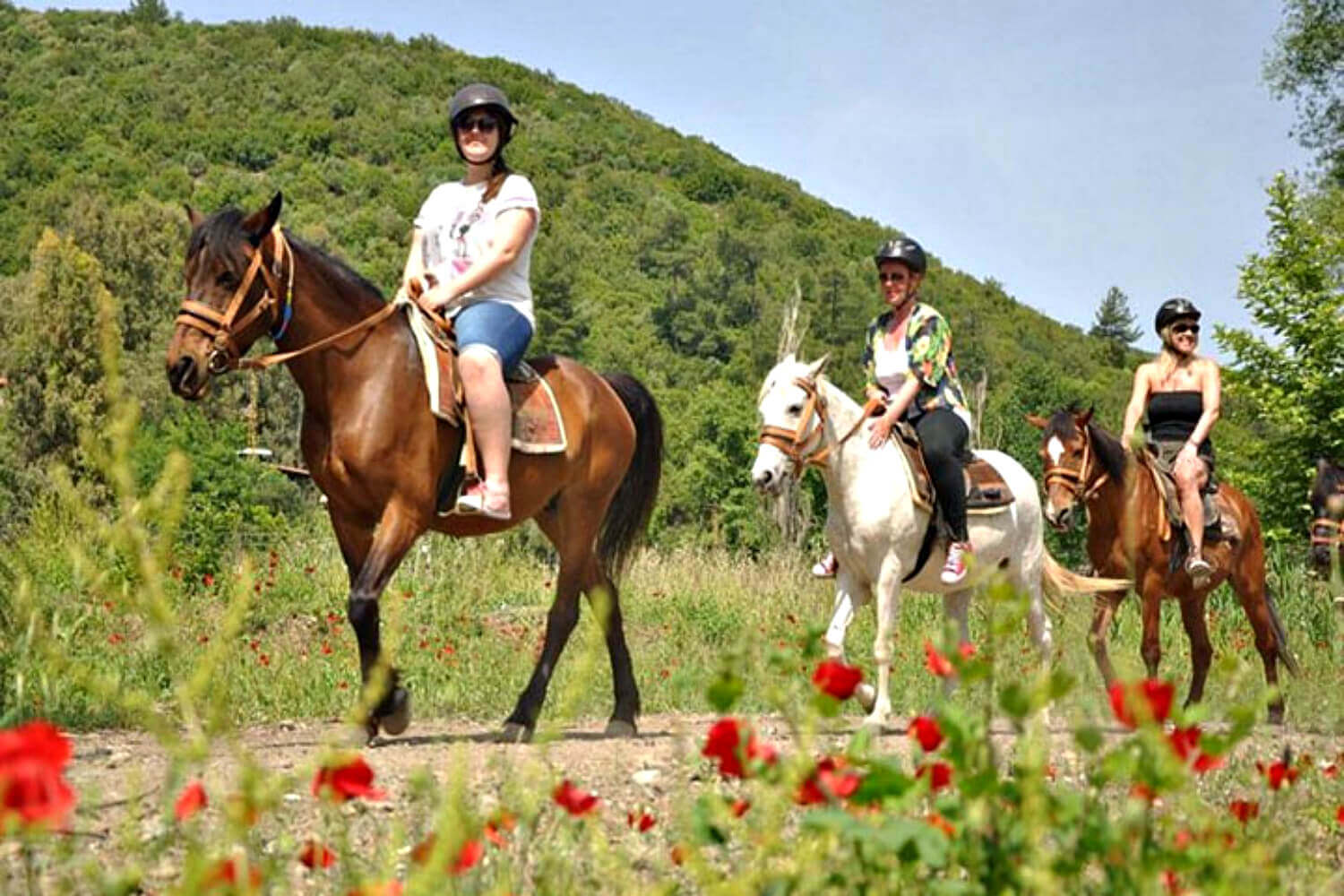 horse riding in sarigerrme
